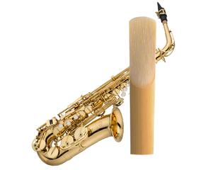Altsaxofoon
