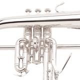 Vincent Bach 183S Stradivarius Bugel - B-Stock_