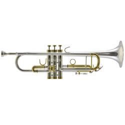 Trevor James Renaissance TJTR 15000 SG Trompet
