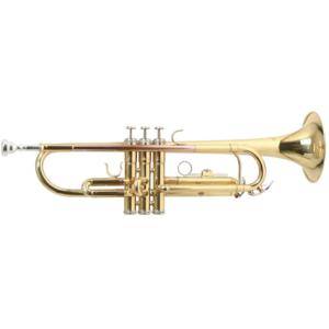 Roy Benson TR101 Trompet